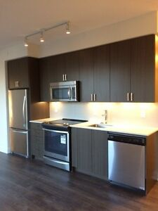 Argento BRAND NEW 2 bedroom luxury condo for rent