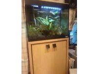 Fluval 90 liter tank with cabinet & accesories