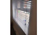 3 Vienetian blinds