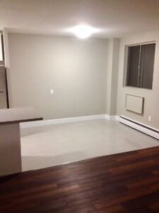 Modern & Newly Renovated 1 Bedroom Suites with Waterfront Views Sarnia Sarnia Area image 9