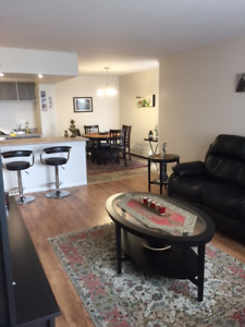 Specious, bright, completely renovated 2 bedroom appartment