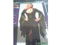 womens Enchantra costume