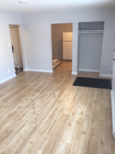 Renovated 2 bedroom townhouse in Salmon Arm