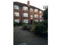 Large Double Room (unfurnished) in lovely flat share