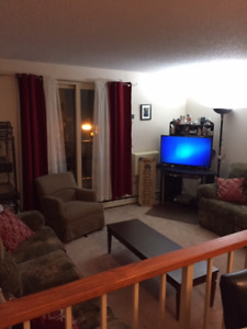 1 bedroom apartment for sublet