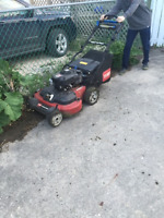 lawn cutting, window/eaves cleaning, pruning & hedging