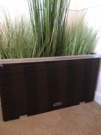 BRAND NEW RATTAN PLANTER (complete with imitation foxtail grass)