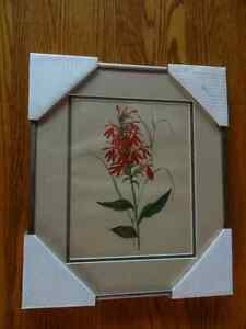 10 Vintage Botanical Prints- Pro Framing & Matting London Ontario image 2