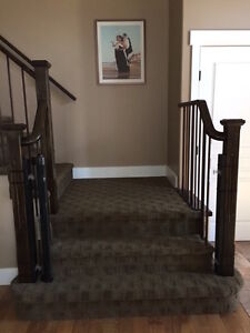 Retractable Baby Gate - extra wide
