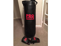 Punch Bag with Boxing Gloves £20