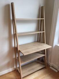 Stylish Ladder Desk