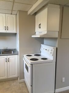 COZY AND BRIGHT 1 Bedroom Apartment–Elmira, ON–Only $825/mon Kitchener / Waterloo Kitchener Area image 6