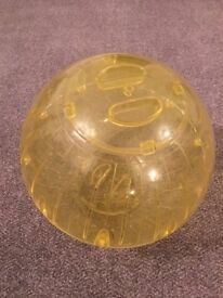 Small Pet exercise ball(s)