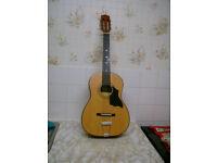 Falcan Acustic Guitar.