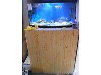 Fish Tank - Jewel180VisionBow,Arcadia OT2 4x39W+cabinet+Sump,skimmer etc HedgeEnd Southampton