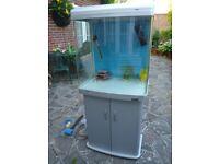 Aqua One AR620T Silver 130L Tropical Aquarium, Stand & Accessories