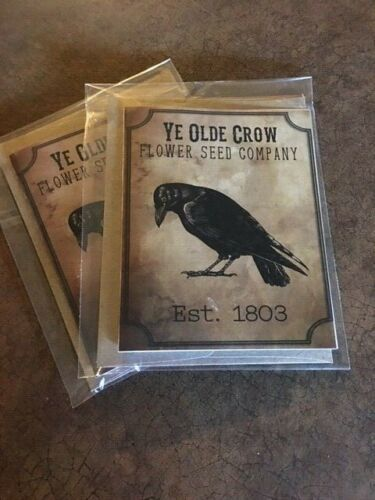 note cards 6 w envelopes set of 6 Ye Olde Crow blank inside FREE SHIPPING