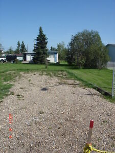 Own Millet 1/2 acre. Total renovate/build-your-own/move on RTM Strathcona County Edmonton Area image 1