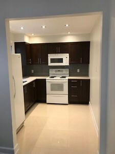 2 bedroom Basement Apartment-Dufferin and Steeles
