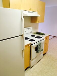 2 Bedroom in Great Neighbourhood  with Insuite Laundry $1170.00!