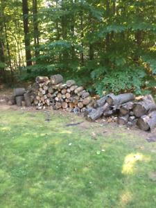 Bois de foyer.Firewood
