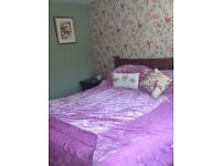 Bright double room looking over garden for single occupancy