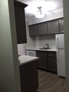 Meewasin River Trails - Renovated 2 Bed - 2 Parking Spaces