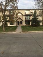 2 Bedroom 1 Bathroom- Close to the U of M