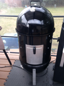 Weber Charcoal Smoker Best of the Best
