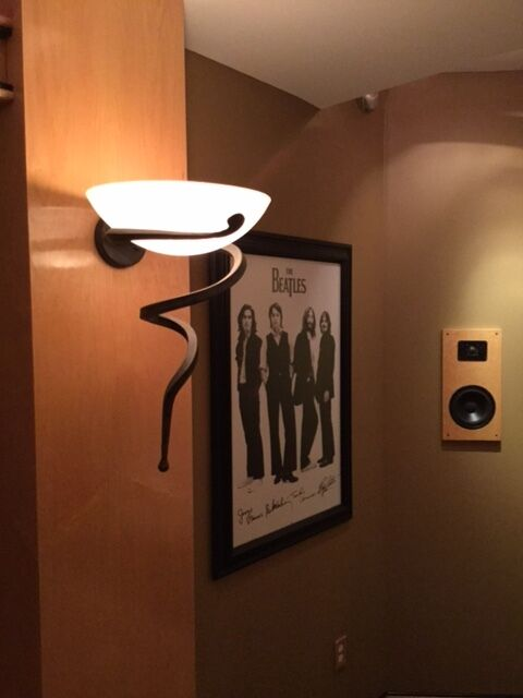 Troy Lighting B8304 Natura 15 Inch Wall Sconce, Home Theater