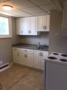 COZY AND BRIGHT 1 Bedroom Apartment–Elmira, ON–Only $825/mon Kitchener / Waterloo Kitchener Area image 5