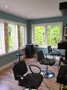 Hairstylist assistant and shampoo person Cambridge Kitchener Area image 1