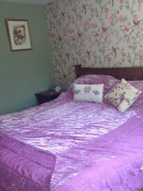 2 Double rooms available in 3 bed house with conservatory and garden