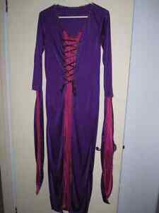 Woman's Medieval or Wizard or Witch Costume for Halloween