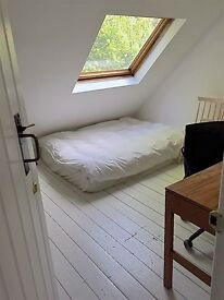 Lovely Double Room to rent in gorgeous flat in CLAPTON