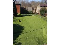 Artificial turf for sale, 50mm pile height