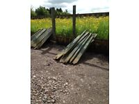 FENCING PALLET WOOD PROJECTS OR FIREWOOD FREE TO COLLECTOR