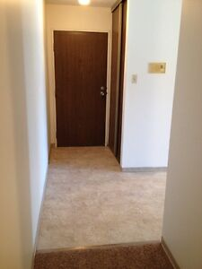 Beautiful 2 BR Apartment! Close to Bus  Stops & Shopping!