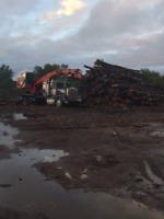 Logging cut and skid contractors