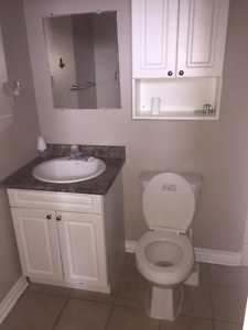 Bathroom Sink and Medicine Cabinet