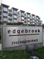 $75 / 1br - 700ft2 - *Go Green Furnished Suite* (EDB)