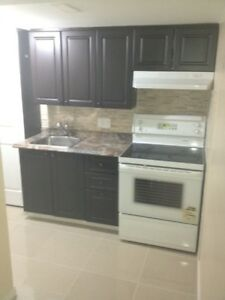 Jnr 1 Bedroom Basement Apt 4 Rent in Heartland (Galesway Blvd)