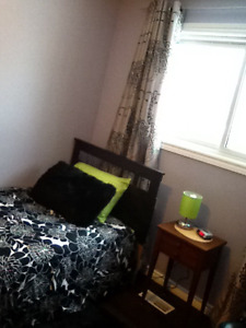 Room near Trent for rent for a summer student