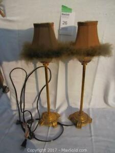 One of a Kind Feathered Lamps