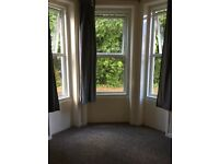 1 bedroom flat (large) recently redecorated with basement