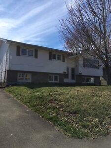 3 Bedroom in West Riverview - Location, Location, Location