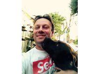 Wimbledon Dogs Club: Dog Walker/Daycare - Dog Walking Service