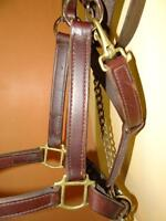 Like new Leather Horse Halter with matching leather lead
