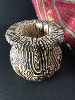 New Zealand Black Mamaku Ponga Tree Fern Vase (a) …beautiful display / collectio