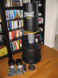 Everlast punching bag in MINT CONDITION + 16 oz gloves, rope etc